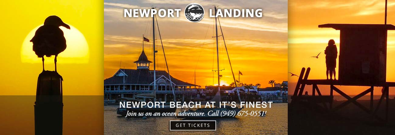 Southern California's premiere whalewatching stop - Newport Landing